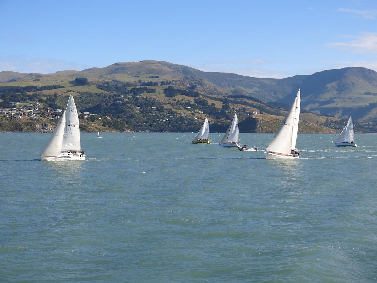 Sailing in Lyttelton