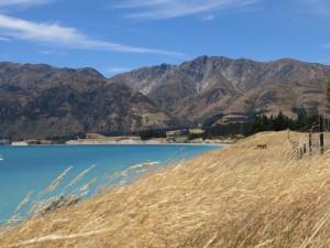 Lake Hawea, Otago