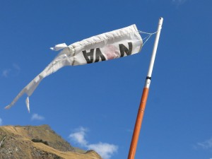Windsock Treble Cone