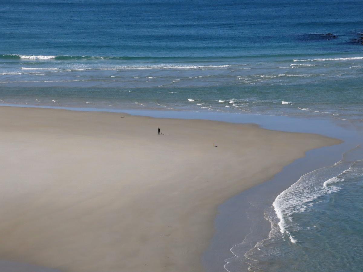 Beach Dunedin