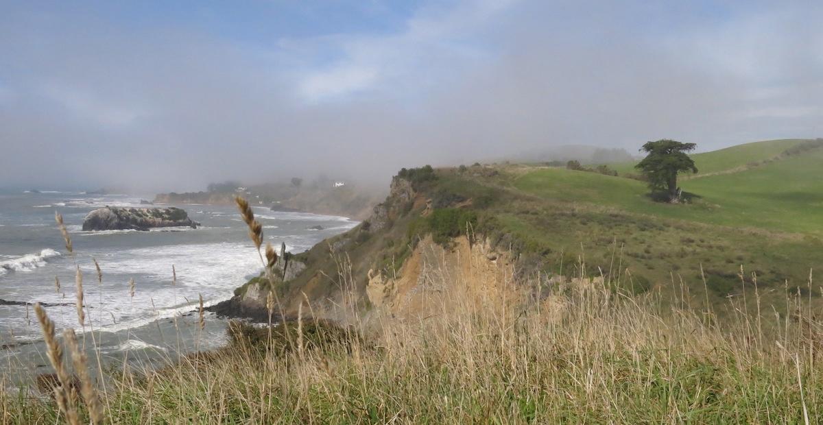 Coastline New Zealand