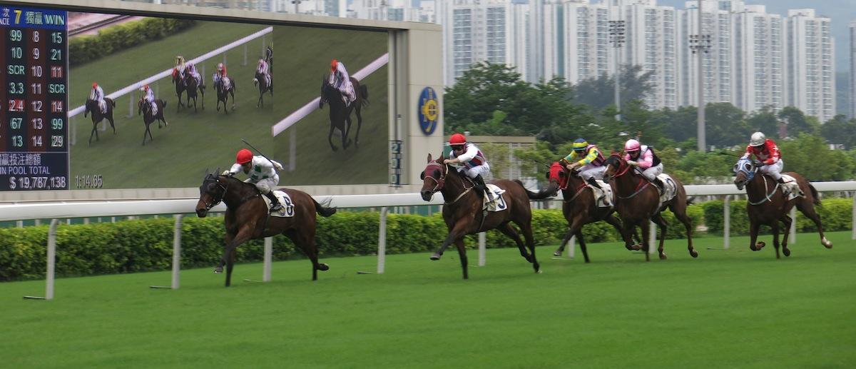 Shatin Horse Racing