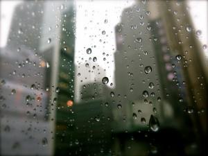 Rain in Hong Kong